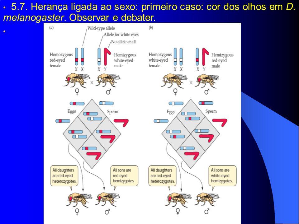 5.7. Herança ligada ao sexo: primeiro caso: cor dos olhos em D. melanogaster. Observar e debater.