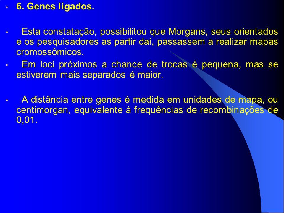 6. Genes ligados. Esta constatação, possibilitou que Morgans, seus orientados e os pesquisadores as partir daí, passassem a realizar mapas cromossômic