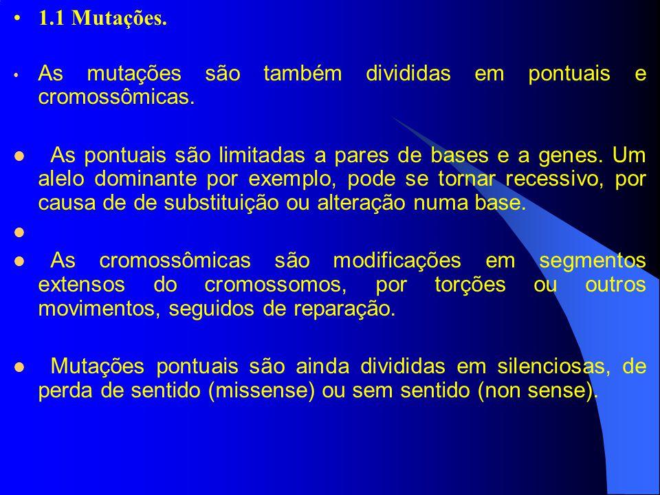 1.1 Mutações. As mutações são também divididas em pontuais e cromossômicas. As pontuais são limitadas a pares de bases e a genes. Um alelo dominante p