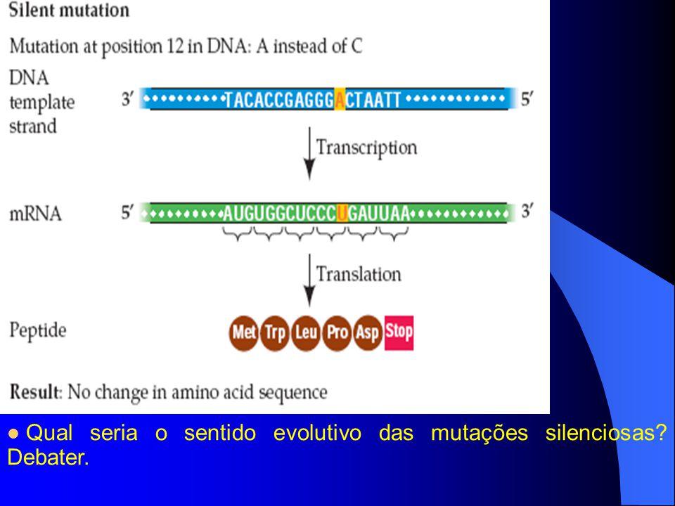 Qual seria o sentido evolutivo das mutações silenciosas? Debater.