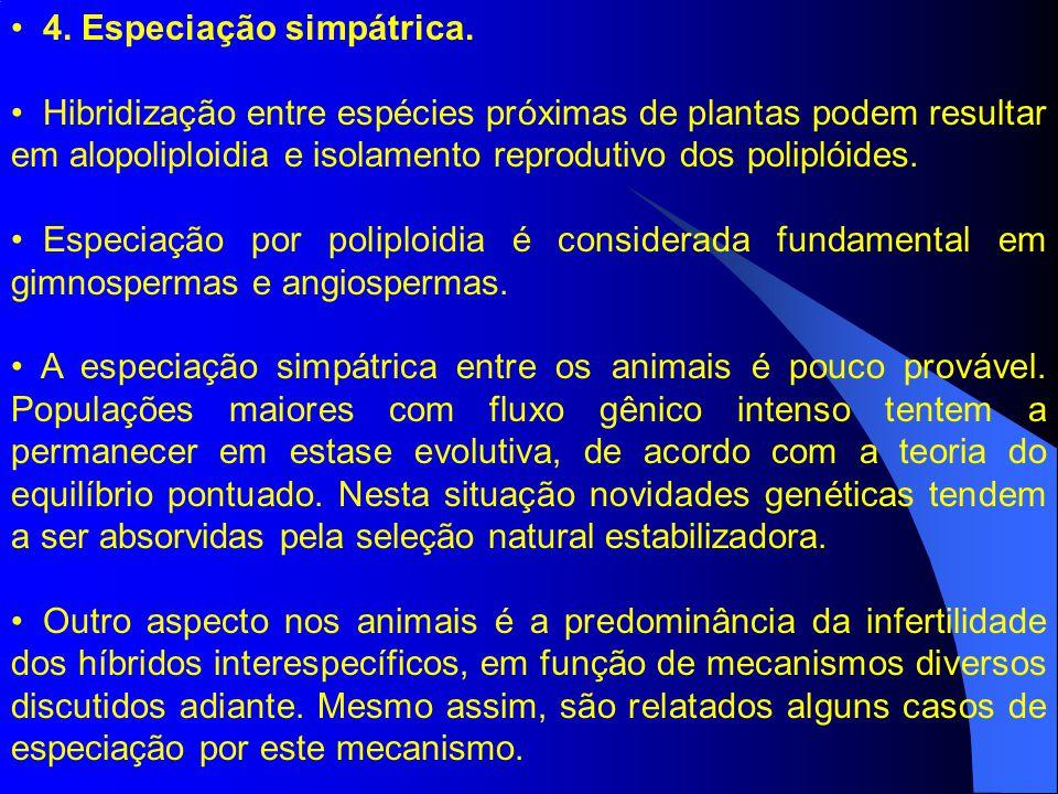 4. Especiação simpátrica. Hibridização entre espécies próximas de plantas podem resultar em alopoliploidia e isolamento reprodutivo dos poliplóides. E