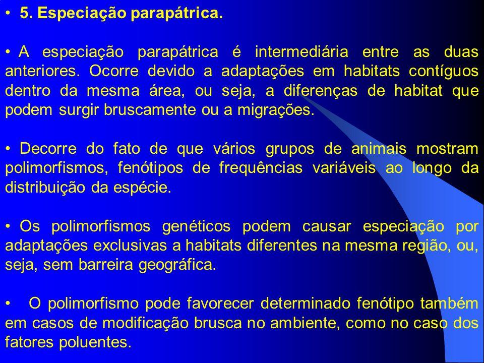 5. Especiação parapátrica. A especiação parapátrica é intermediária entre as duas anteriores. Ocorre devido a adaptações em habitats contíguos dentro
