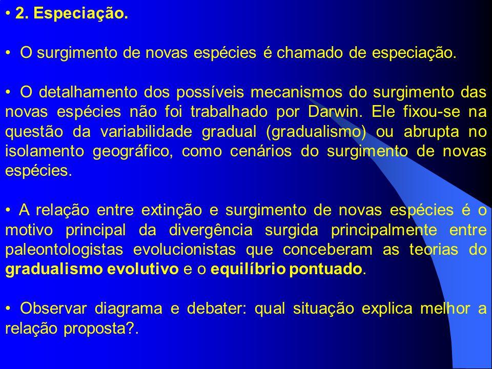 11.Variação nas taxas de especiação. C.