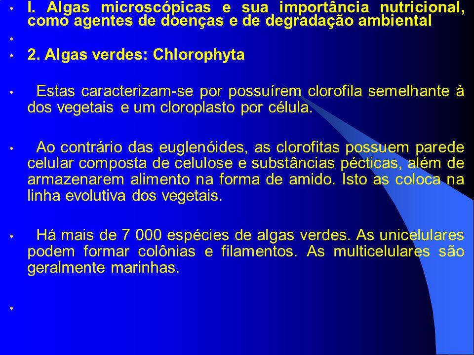 I. Algas microscópicas e sua importância nutricional, como agentes de doenças e de degradação ambiental 2. Algas verdes: Chlorophyta Estas caracteriza