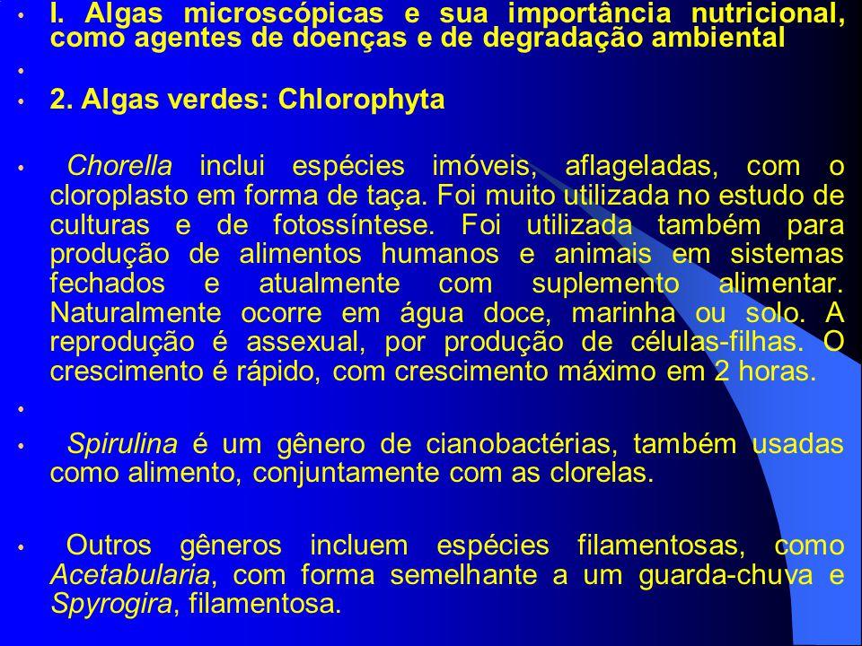 I. Algas microscópicas e sua importância nutricional, como agentes de doenças e de degradação ambiental 2. Algas verdes: Chlorophyta Chorella inclui e