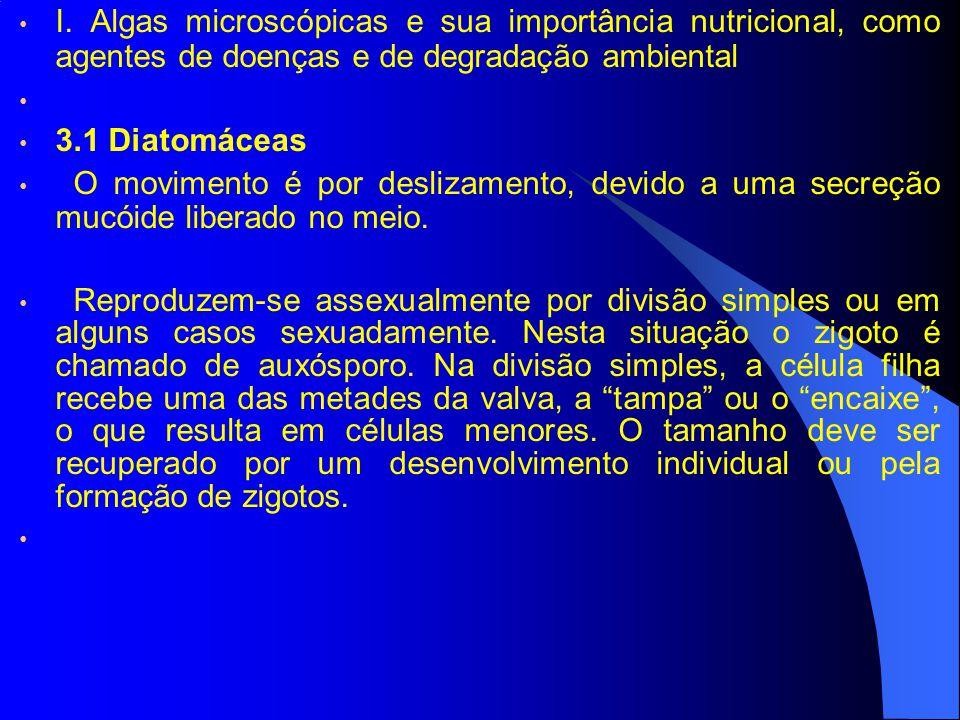 I. Algas microscópicas e sua importância nutricional, como agentes de doenças e de degradação ambiental 3.1 Diatomáceas O movimento é por deslizamento