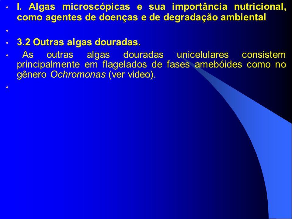 I. Algas microscópicas e sua importância nutricional, como agentes de doenças e de degradação ambiental 3.2 Outras algas douradas. As outras algas dou