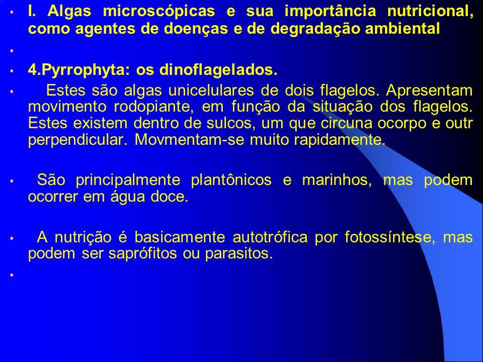 I. Algas microscópicas e sua importância nutricional, como agentes de doenças e de degradação ambiental 4.Pyrrophyta: os dinoflagelados. Estes são alg