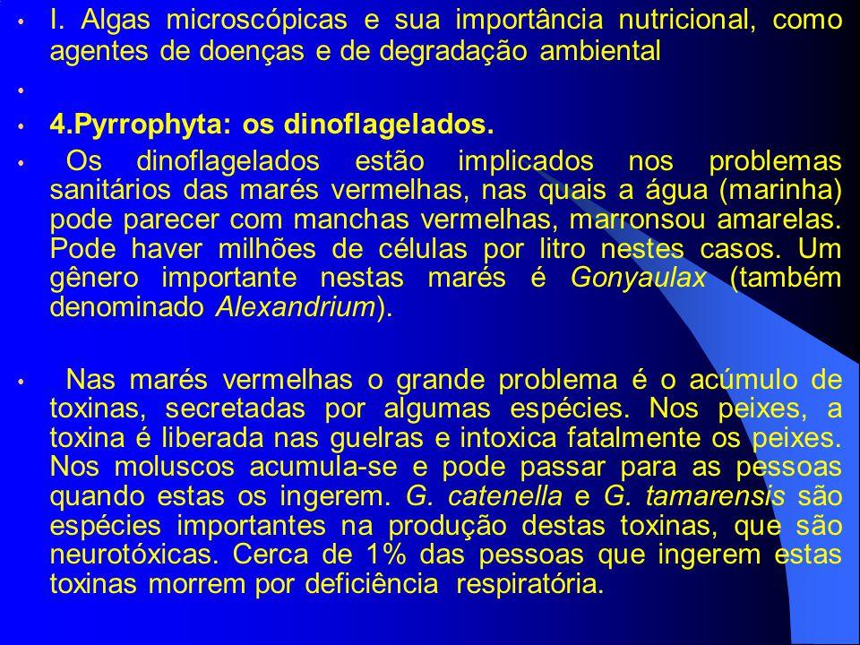 I. Algas microscópicas e sua importância nutricional, como agentes de doenças e de degradação ambiental 4.Pyrrophyta: os dinoflagelados. Os dinoflagel