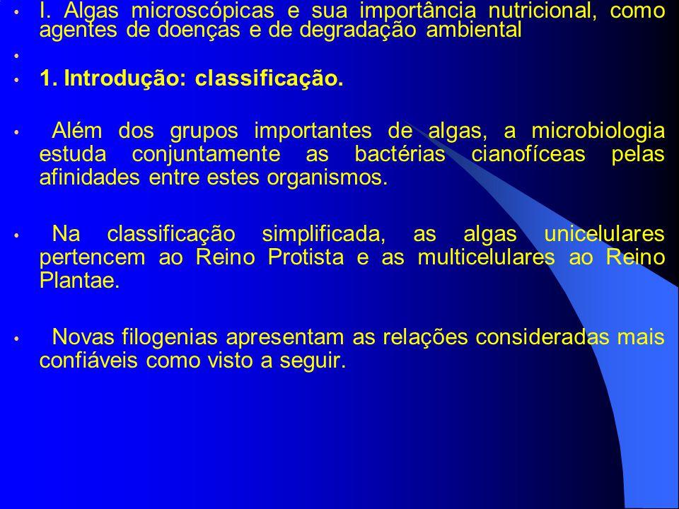 I. Algas microscópicas e sua importância nutricional, como agentes de doenças e de degradação ambiental 1. Introdução: classificação. Além dos grupos