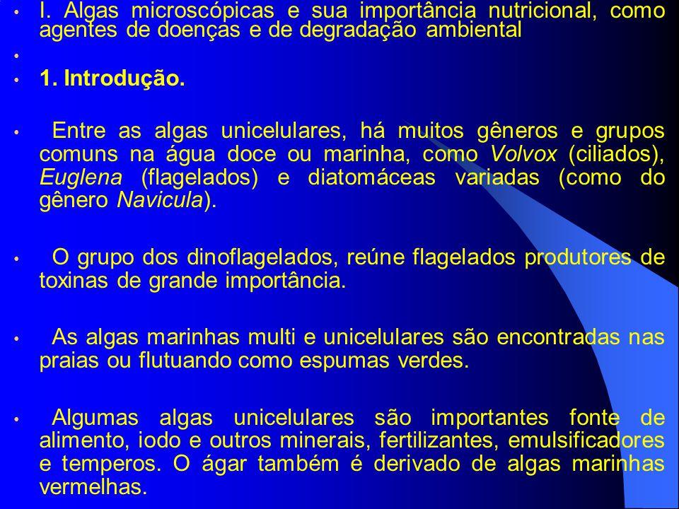 I. Algas microscópicas e sua importância nutricional, como agentes de doenças e de degradação ambiental 1. Introdução. Entre as algas unicelulares, há