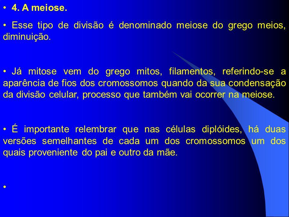 4.A meiose. Esse tipo de divisão é denominado meiose do grego meios, diminuição.