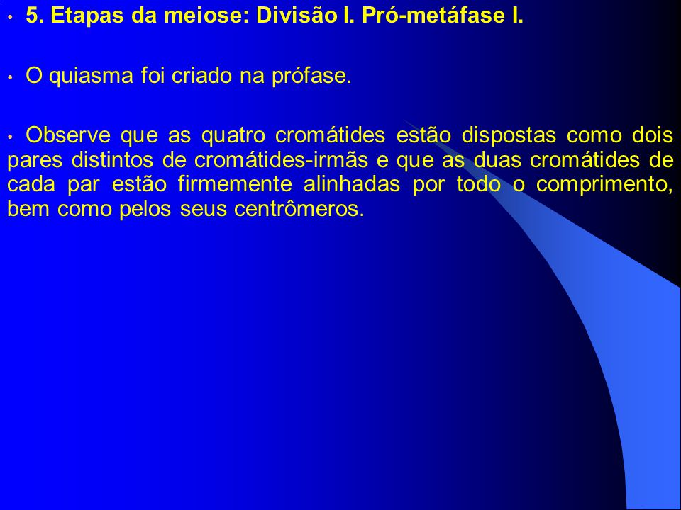 5.Etapas da meiose: Divisão I. Pró-metáfase I. O quiasma foi criado na prófase.