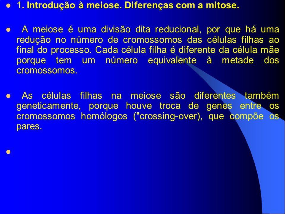 1. Introdução à meiose. Diferenças com a mitose. A meiose é uma divisão dita reducional, por que há uma redução no número de cromossomos das células f