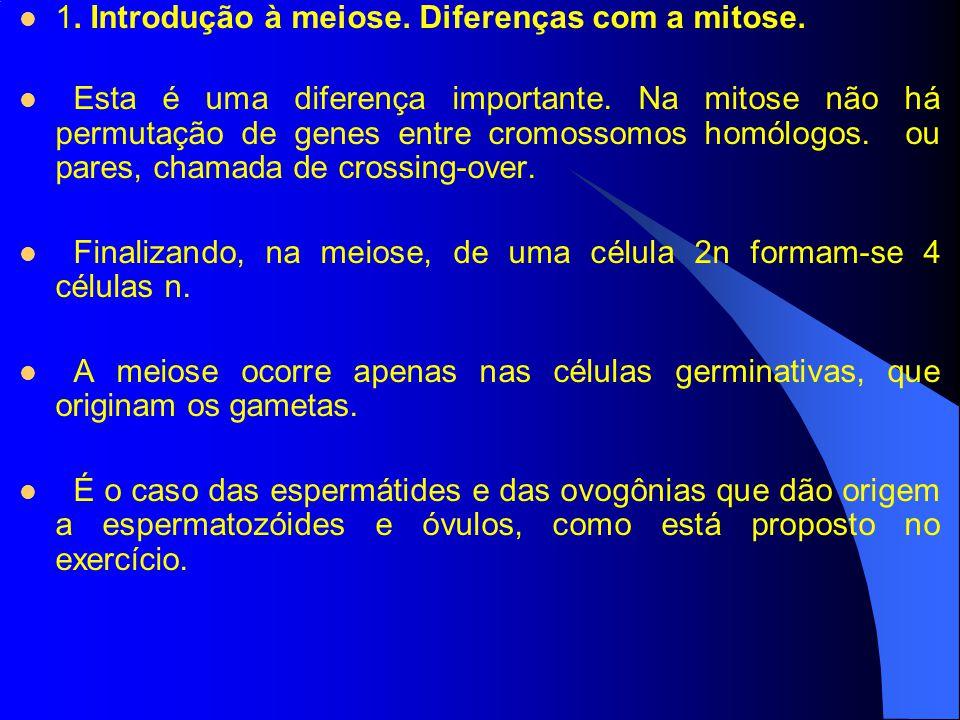 1. Introdução à meiose. Diferenças com a mitose. Esta é uma diferença importante. Na mitose não há permutação de genes entre cromossomos homólogos. ou