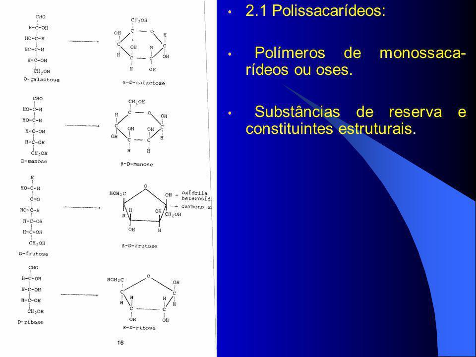 2.1 Polissacarídeos: Polímeros de monossaca- rídeos ou oses. Substâncias de reserva e constituintes estruturais.