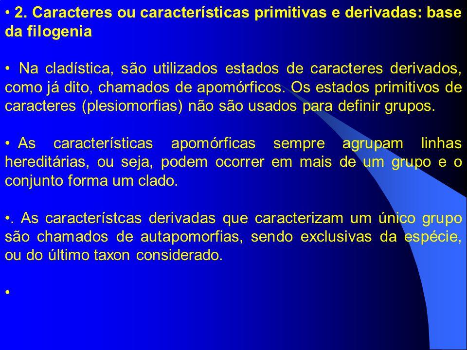 2. Caracteres ou características primitivas e derivadas: base da filogenia Na cladística, são utilizados estados de caracteres derivados, como já dito