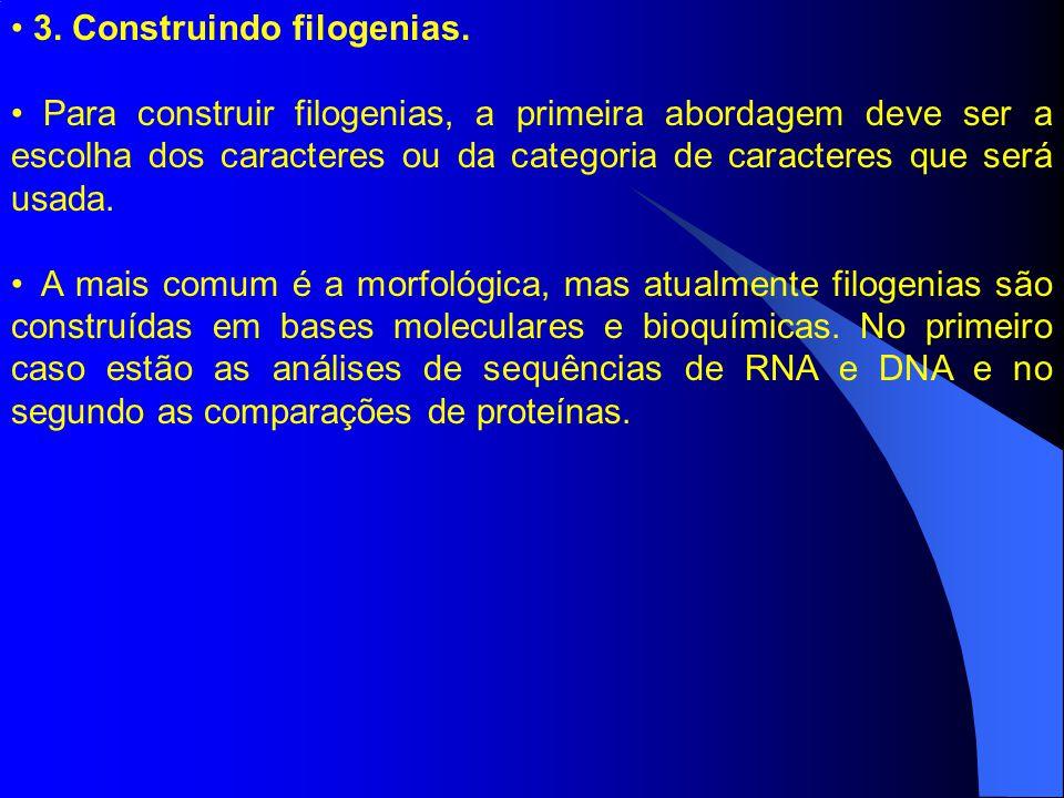 3. Construindo filogenias. Para construir filogenias, a primeira abordagem deve ser a escolha dos caracteres ou da categoria de caracteres que será us
