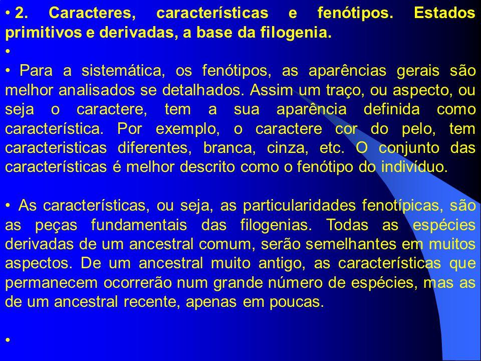 2. Caracteres, características e fenótipos. Estados primitivos e derivadas, a base da filogenia. Para a sistemática, os fenótipos, as aparências gerai