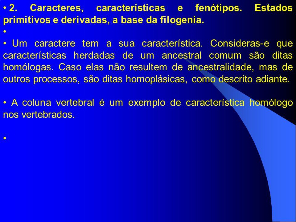 2. Caracteres, características e fenótipos. Estados primitivos e derivadas, a base da filogenia. Um caractere tem a sua característica. Consideras-e q