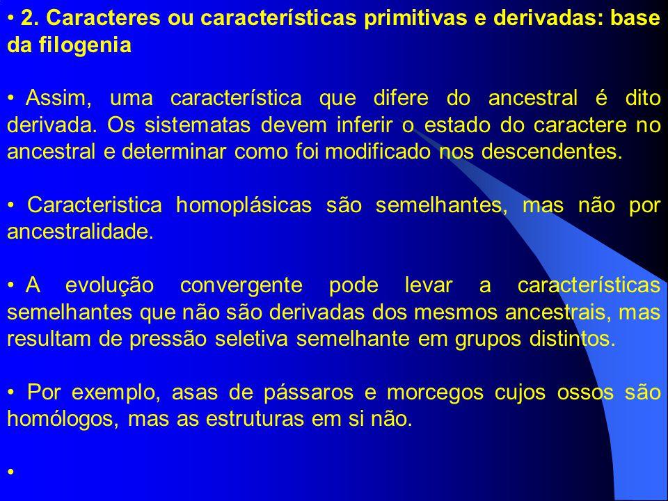 2. Caracteres ou características primitivas e derivadas: base da filogenia Assim, uma característica que difere do ancestral é dito derivada. Os siste
