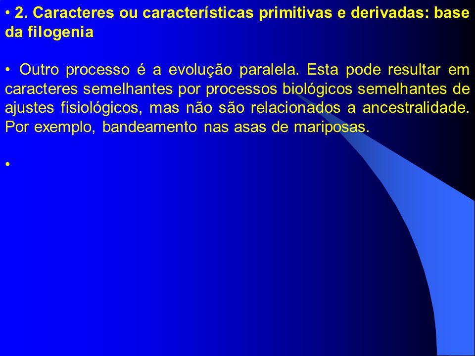 2. Caracteres ou características primitivas e derivadas: base da filogenia Outro processo é a evolução paralela. Esta pode resultar em caracteres seme