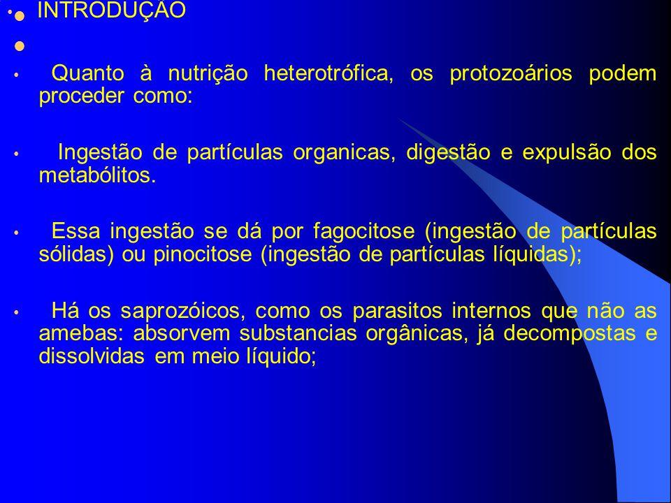 Quanto à nutrição heterotrófica, os protozoários podem proceder como: Ingestão de partículas organicas, digestão e expulsão dos metabólitos.