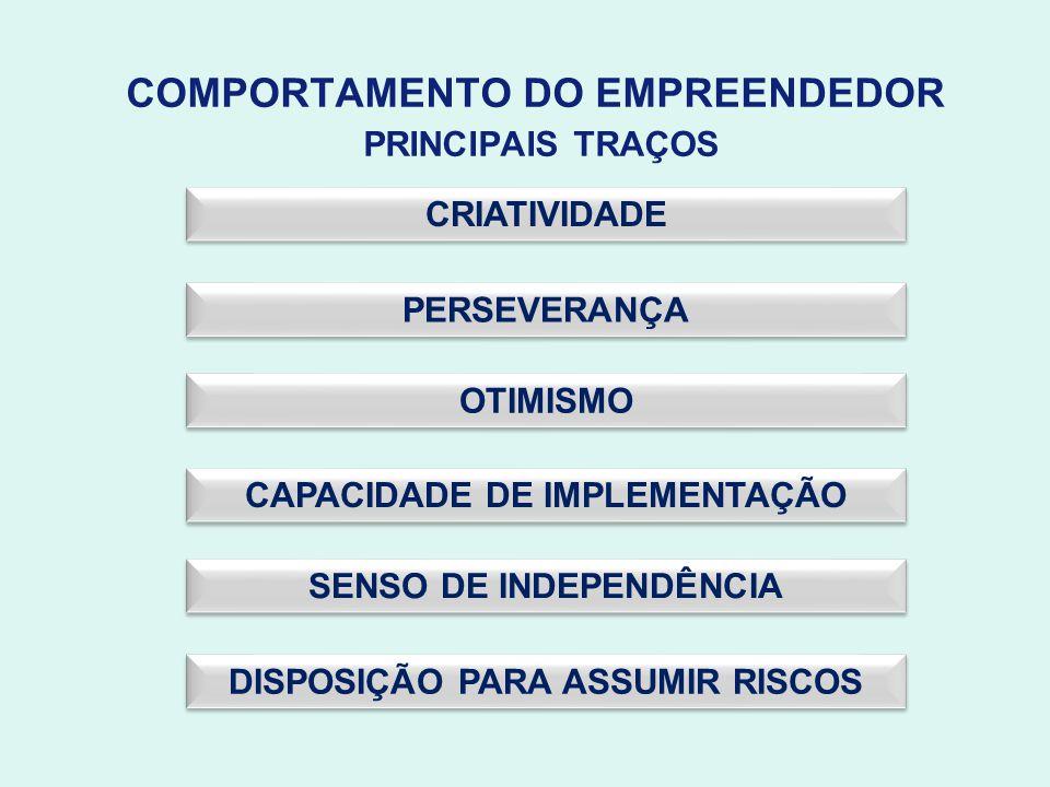 COMPORTAMENTO DO EMPREENDEDOR PRINCIPAIS TRAÇOS CRIATIVIDADE OTIMISMO PERSEVERANÇA CAPACIDADE DE IMPLEMENTAÇÃO DISPOSIÇÃO PARA ASSUMIR RISCOS SENSO DE