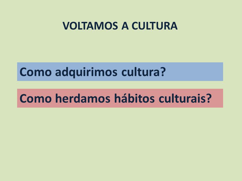VOLTAMOS A CULTURA Como adquirimos cultura? Como herdamos hábitos culturais?