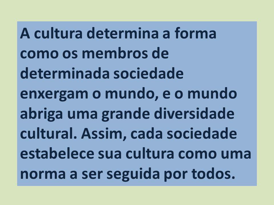 A cultura determina a forma como os membros de determinada sociedade enxergam o mundo, e o mundo abriga uma grande diversidade cultural. Assim, cada s