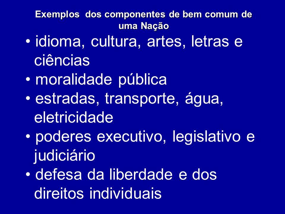 Exemplos dos componentes de bem comum de uma Nação idioma, cultura, artes, letras e ciências moralidade pública estradas, transporte, água, eletricida