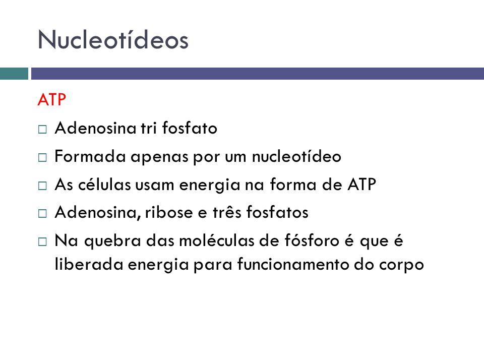 Nucleotídeos ATP Adenosina tri fosfato Formada apenas por um nucleotídeo As células usam energia na forma de ATP Adenosina, ribose e três fosfatos Na