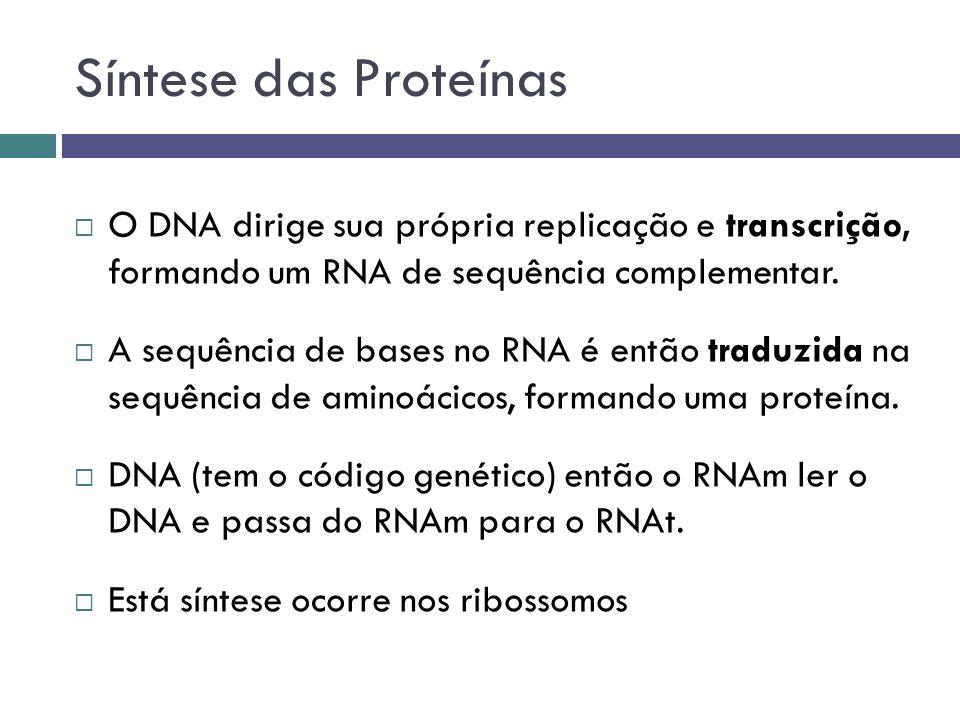 Síntese das Proteínas O DNA dirige sua própria replicação e transcrição, formando um RNA de sequência complementar. A sequência de bases no RNA é entã