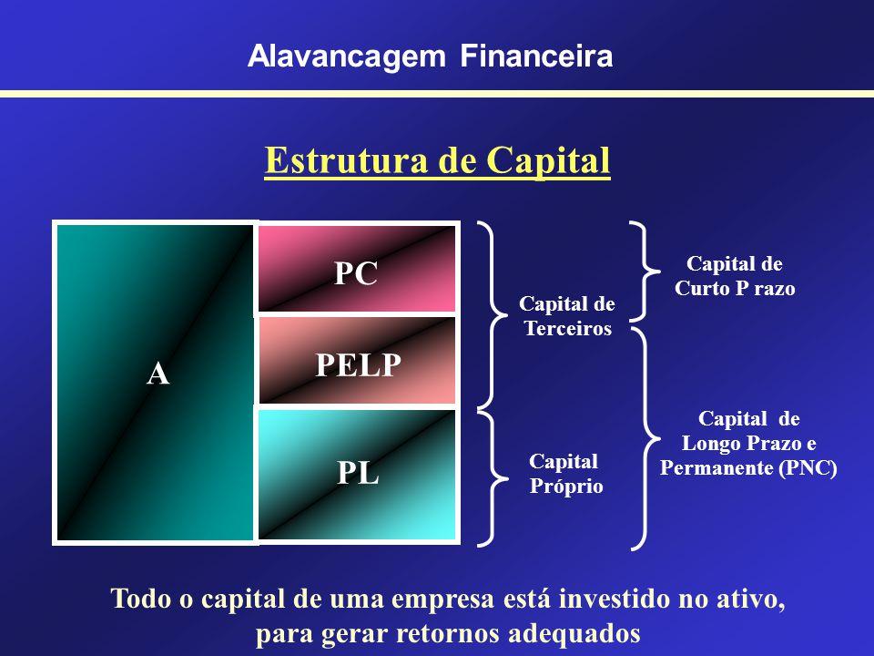 Prof. Hubert Chamone Gesser, Dr. Retornar Alavancagem Financeira