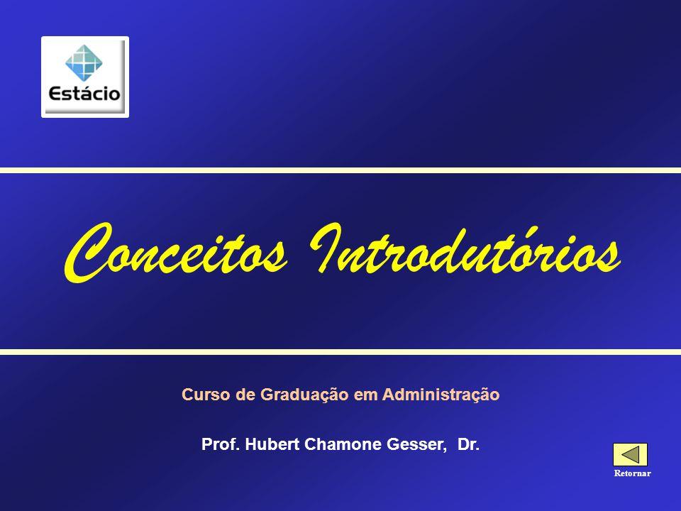 Curso de Graduação em Administração Prof.Hubert Chamone Gesser, Dr.