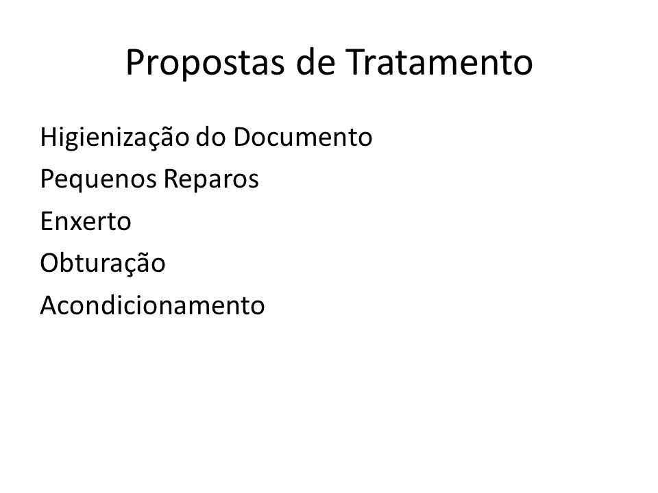 Propostas de Tratamento Higienização do Documento Pequenos Reparos Enxerto Obturação Acondicionamento