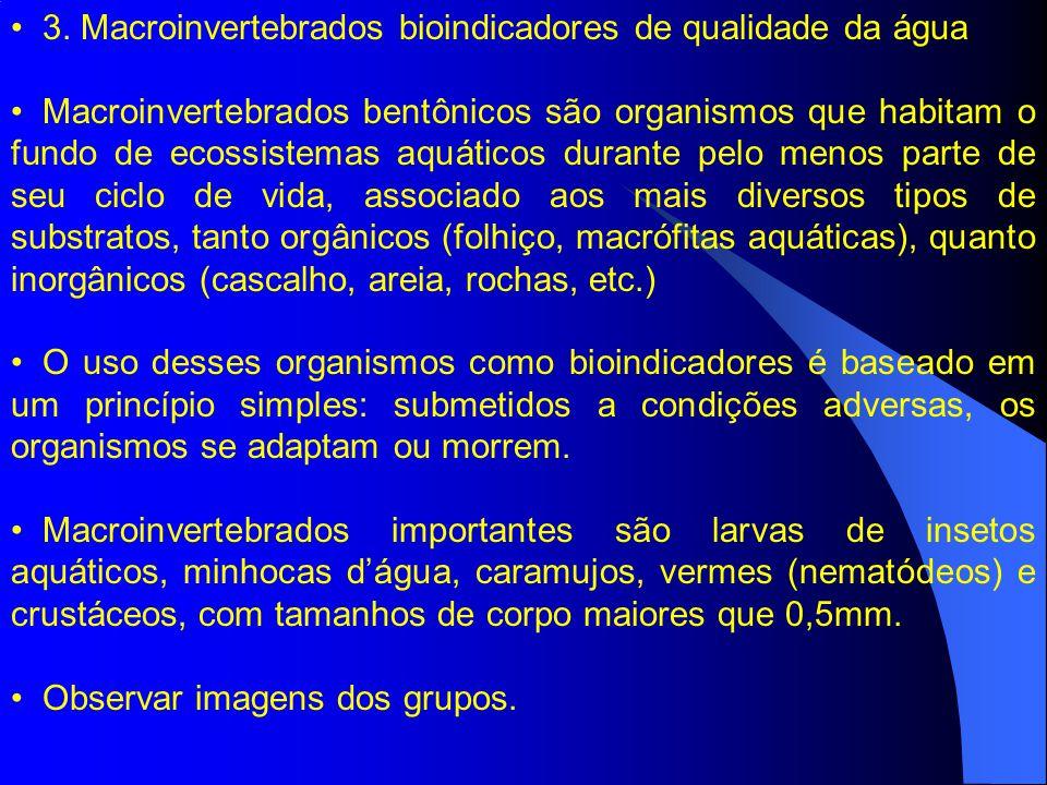 3. Macroinvertebrados bioindicadores de qualidade da água Macroinvertebrados bentônicos são organismos que habitam o fundo de ecossistemas aquáticos d