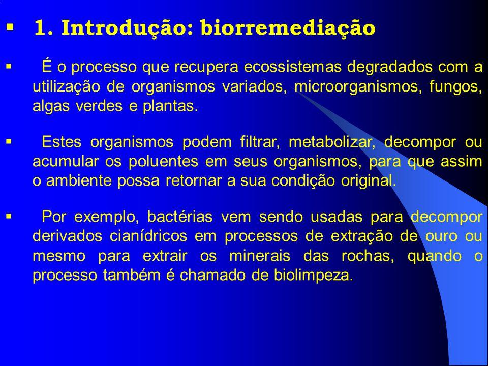 1. Introdução: biorremediação É o processo que recupera ecossistemas degradados com a utilização de organismos variados, microorganismos, fungos, alga