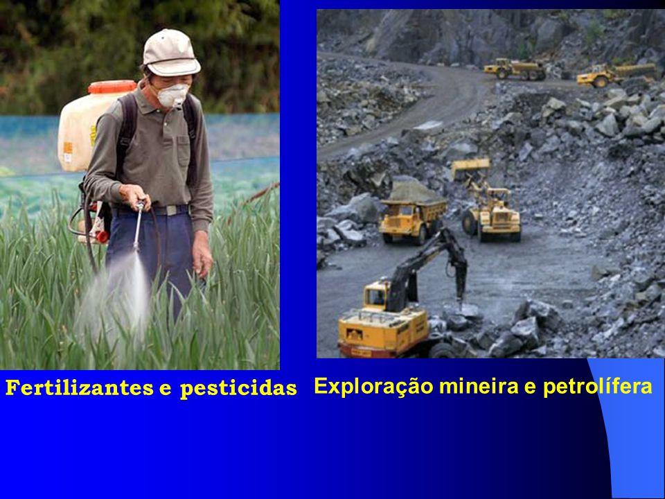 Fertilizantes e pesticidas Exploração mineira e petrolífera