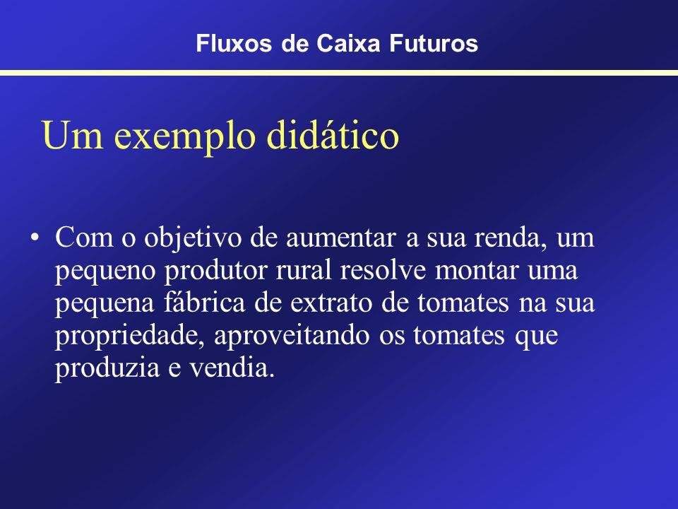 Pensando no... Custo de Oportunidade Fluxos de Caixa Futuros