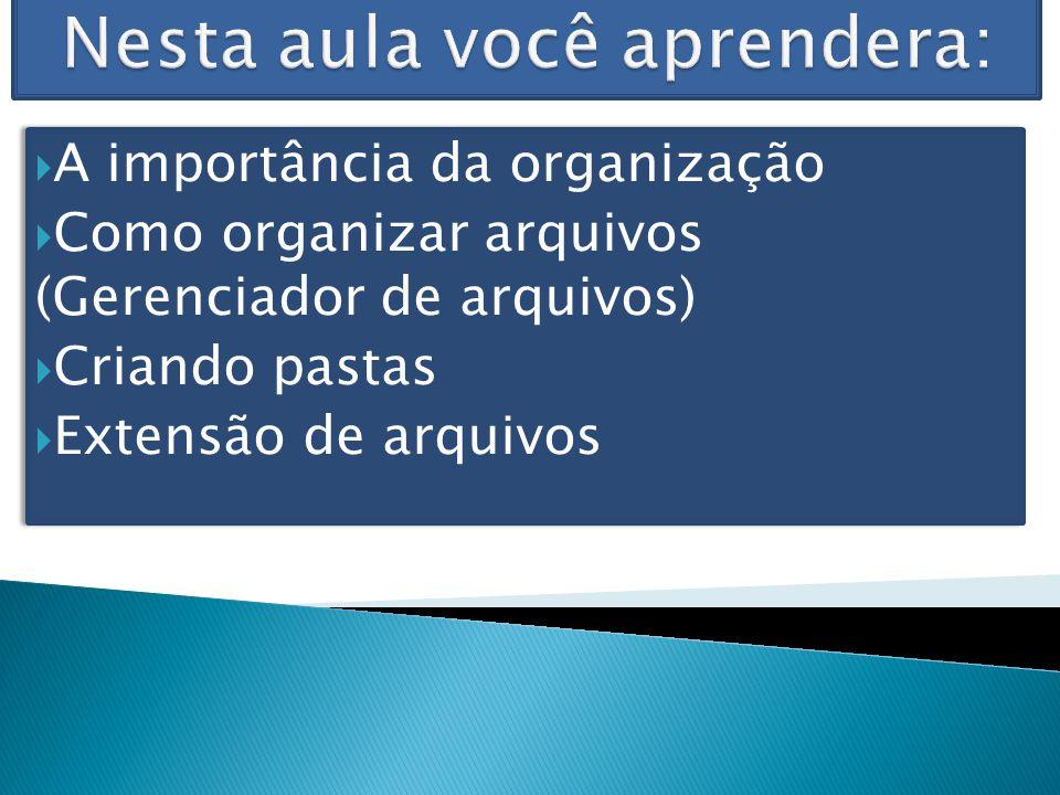 A importância da organização Como organizar arquivos (Gerenciador de arquivos) Criando pastas Extensão de arquivos A importância da organização Como o