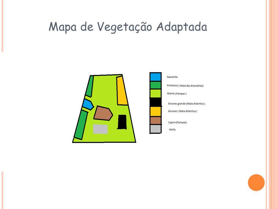 Mapa de Vegetação Adaptada