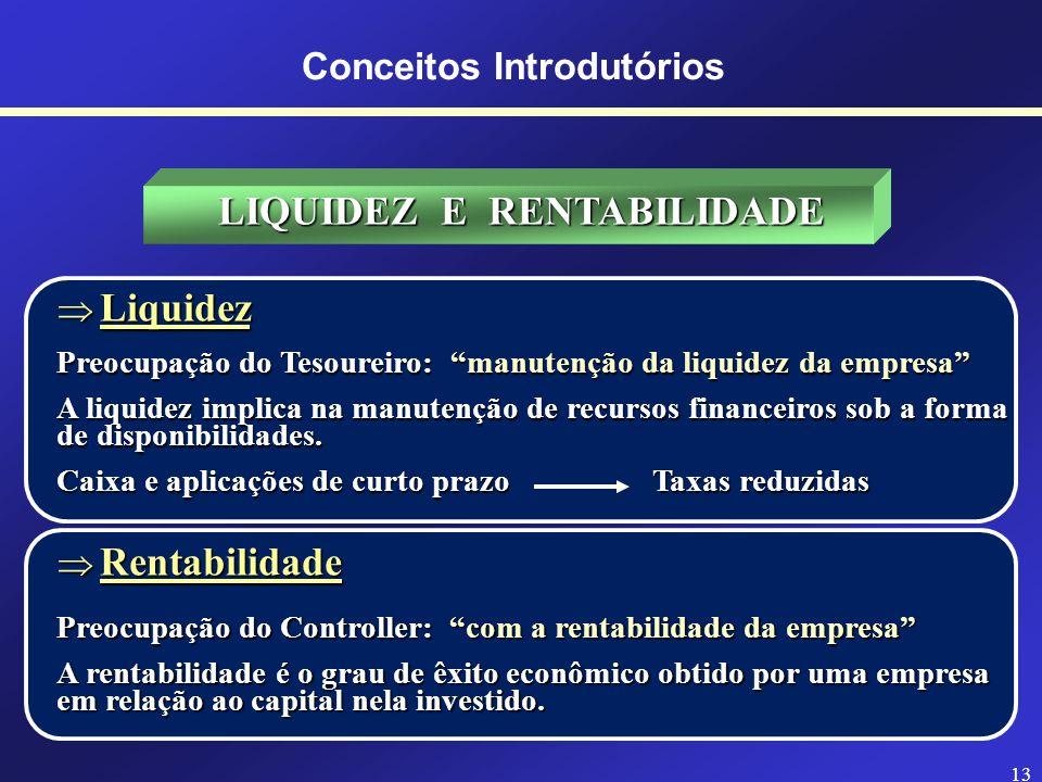 12 Contabilidade Financeira Contabilidade de Custos Orçamentos Administração de Tributos Sistemas de Informação Administração de Caixa Crédito e Contas a Receber Contas a Pagar Câmbio Planejamento Financeiro Administração Financeira Tesouraria Controladoria ESTRUTURA ORGANIZACIONAL (Área de Finanças) Conceitos Introdutórios