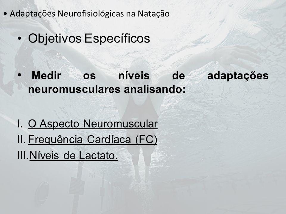 Adaptações Neurofisiológicas na Natação Objetivos Específicos Medir os níveis de adaptações neuromusculares analisando: I.O Aspecto Neuromuscular II.F