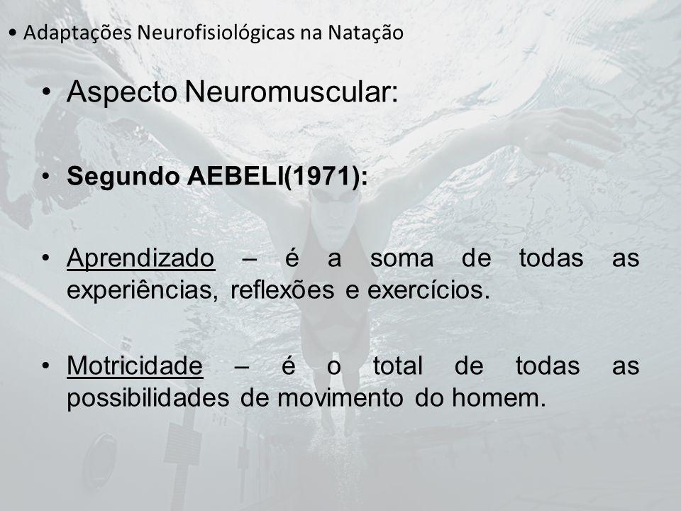 Adaptações Neurofisiológicas na Natação Aspecto Neuromuscular: A motricidade individual depende da: I.Constituição Física II.Sexo III.Tipo Morfológico IV.Idade V.Temperamento VI.Velocidade de Reação