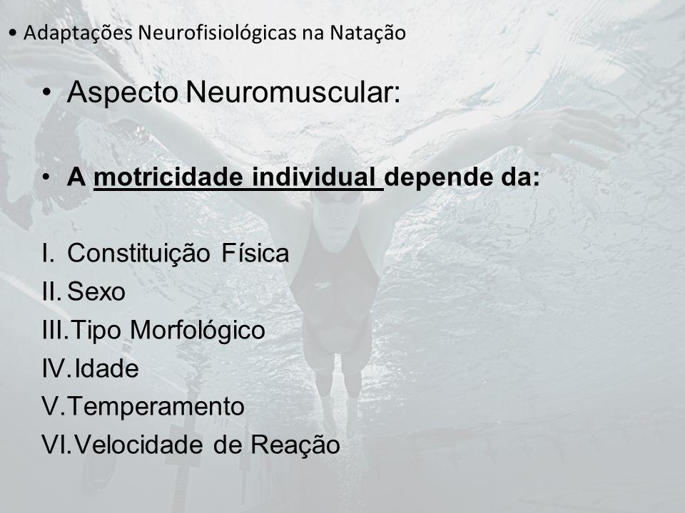 Adaptações Neurofisiológicas na Natação Aspecto Neuromuscular: A motricidade individual depende da: I.Constituição Física II.Sexo III.Tipo Morfológico