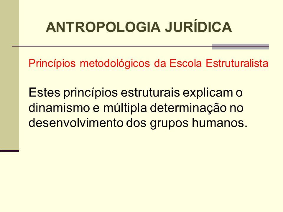 Princípios metodológicos da Escola Estruturalista Estes princípios estruturais explicam o dinamismo e múltipla determinação no desenvolvimento dos gru