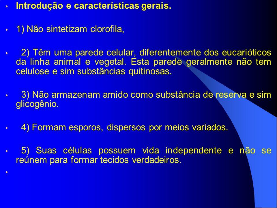 Introdução e características gerais.6) Podem ser uni ou multinucleados.