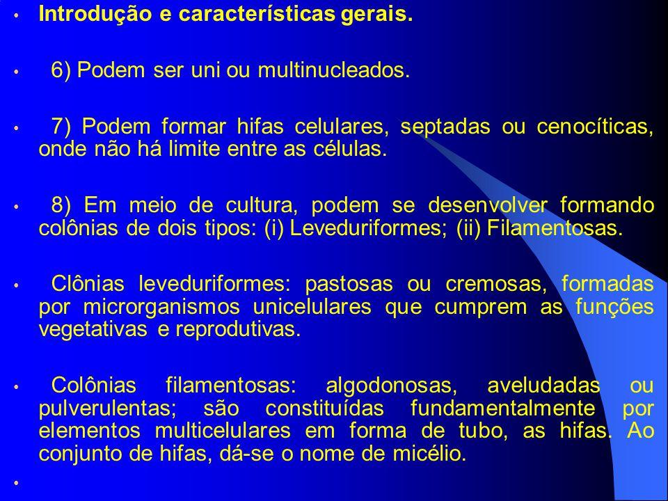 Introdução e características gerais. 6) Podem ser uni ou multinucleados. 7) Podem formar hifas celulares, septadas ou cenocíticas, onde não há limite