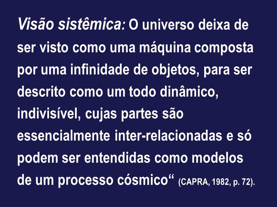 Visão sistêmica : O universo deixa de ser visto como uma máquina composta por uma infinidade de objetos, para ser descrito como um todo dinâmico, indi